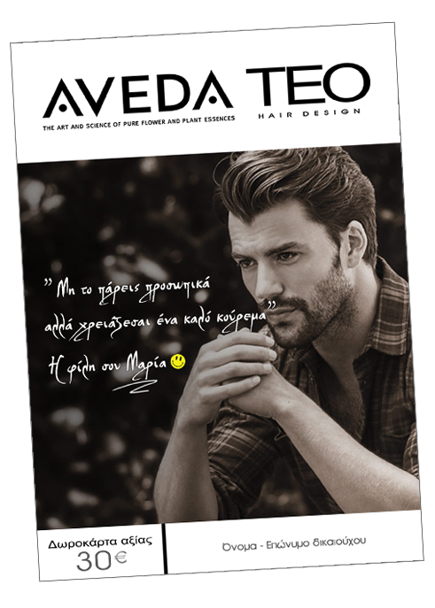 Aveda teo gift card Men